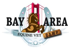 BAEC Equine Vet Logo-01