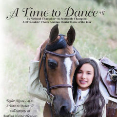 atimetodancehorse