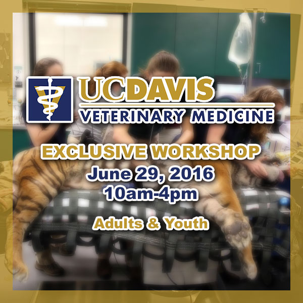 Exclusive Workshop at UC Davis Now Open to Adults!